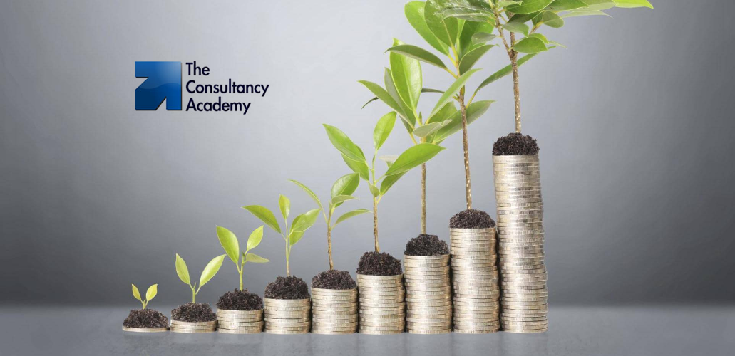 Business Growth Catalyst - Consulting Academy